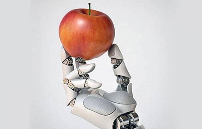 Photo of الذكاء الاصطناعي يدعم كفاءة المنظومة الغذائية في الإمارات